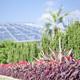 カメラを持って出かけよう!子連れで楽しむおすすめ植物園 4選|福岡