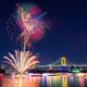 2015年花火大会は子連れで楽しもう!隅田川・熱海おすすめプラン