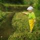自分で釣った魚を食べよう!おすすめ子連れアウトドアスポット4選|神奈川