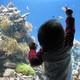 楽しい&珍しい体験がいっぱい!福井県にある越前松島水族館がオモシロイ