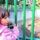 珍しい動物とも触れ合える!?宮城県の子どもが喜ぶおすすめ動物園2選