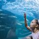 海獣たちと触れ合える!東海地方の超個性派おすすめ水族館10選