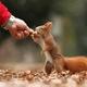 親子で動物たちに大接近!動物とのふれあい重視の動物園4選|東海地方