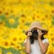 元気をもらえる夏の花!静岡県のひまわり畑の名所3選