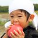 夏に美味しい野菜を収穫してみよう!関東にあるおすすめの農園4選