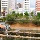意外と多い!?子どもと行ける東京都のおすすめ釣り堀3選