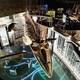 地球館がリニューアル!上野の国立科学博物館に行くなら今がおすすめ