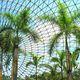 花に囲まれて深呼吸!開放感あふれる植物園4選|大阪府