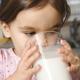 子どもが大好きな乳製品について学ぼう!茨城県の「明治乳業 みるく館」