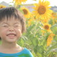 弾ける笑顔と夏の思い出作りに!ひまわり畑の名所3選|千葉