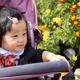 子連れファミリーのレジャーに最適!埼玉県内のおすすめ植物園