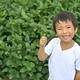 東京都内で収穫体験ができる!世田谷区で夏の果物狩り&収穫体験スポット