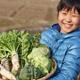 食欲の秋を満喫しよう!親子で行きたい神奈川県の味覚狩りスポット3選