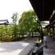 世界遺産のお寺に泊まろう!総本山 仁和寺で非日常体験|京都府