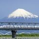 静岡駅周辺を親子で遊ぼう!新幹線に乗っておでかけ|静岡県