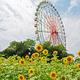 自然も遊具も満喫!愛知県のテーマパークに子連れで行こう!4選