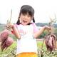 小さい子でも楽しめる!甘くて美味しい秋のさつまいもを掘りに行こう|愛知県