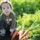 レッツ食育! 親子で農業体験ができるスポット3選|静岡県