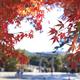 芸術の秋を親子で楽しもう!三重県への旅行にもおすすめ美術館