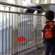 京都で子連れで楽しく過ごせる場所&新幹線 ~我が子たちの様子編~