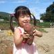 広島県にある子連れに人気の「さつまいも掘り」スポット3選