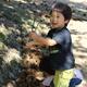 大粒の秋の味覚をゲット! 栗拾いスポット3選|宮城県