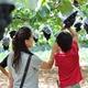 大粒な果実の恵みをいただきます! ぶどう狩り3選|静岡県