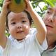 梨狩りでもぎたてが食べたい!新潟の子どもも楽しめるおすすめ農園3選