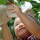 子どもと梨狩りをするなら!福岡でおすすめの梨狩りスポット3選