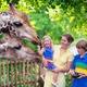動物との触れ合いで命の大切さを学ぼう!茨城の動物園おすすめ3選
