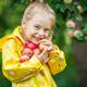 魅力たっぷりの北海道で秋の味覚りんご狩りを子連れで満喫!