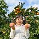 ジューシーおいしい! みかん狩りスポット3選|静岡県