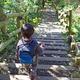神奈川で子連れ登山!富士山が見える山おすすめ3選