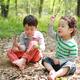 京都で子どもと一緒に山登りができるおすすめの山3選|京都府