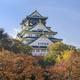 大阪府内のおすすめ紅葉スポット9選 子連れで紅葉を楽しもう!