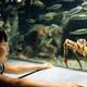 しながわ水族館はイベントが多くファミリーにおすすめ!|東京都