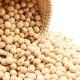 「大豆イソフラボン」が女性にうれしい!そのパワーと効果とは?