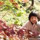 千葉県の紅葉スポット9選|子どもと一緒に楽しく秋を満喫!