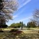 都心の自然「世田谷公園」でSLやプレーパークで楽しもう|東京都