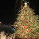 名古屋で夜景を見ながらメリークリスマス!おすすめスポット4選