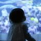 エプソンアクアパーク品川の魅力 こんな水族館は他にはない!