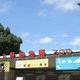 上野動物園を赤ちゃんと一緒に楽しむ!おすすめのお散歩コース