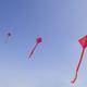 いまどき凧はこうなった!「立体カイト」新感覚のお正月あそび
