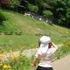 くりはま花の国にはゴジラがいる?遊具もあり子連れに最適!|神奈川県