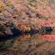 子どもも喜ぶ!広島県の紅葉狩りスポットおすすめ3選