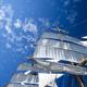 さあ、船出だよ!海の冒険を楽しめる絵本・児童書シリーズ3選