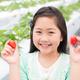 「すぎやまいちご園」は子連れいちご狩りにぴったり!|神奈川
