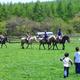自然いっぱいの長門牧場で乗馬体験や美味しいアイスクリームを|長野県