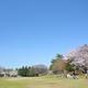 長い滑り台にバーベキューが人気!昭和の森公園|千葉市