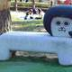 岡崎市で遊具がたくさんの公園!岡崎市南公園|愛知県